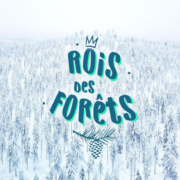 Logo rois des forets